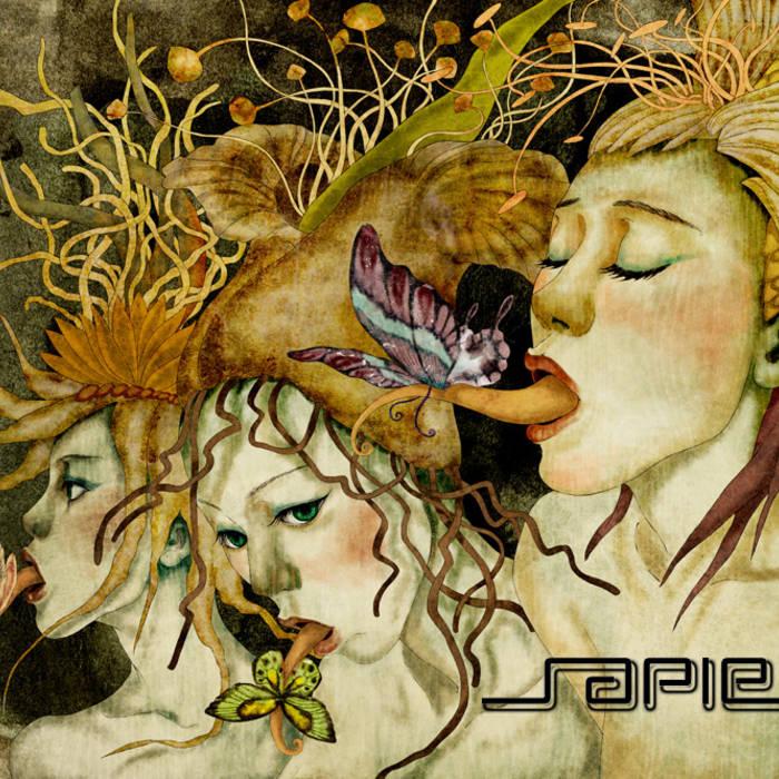 Chromatic Fallacies (WIP) cover art