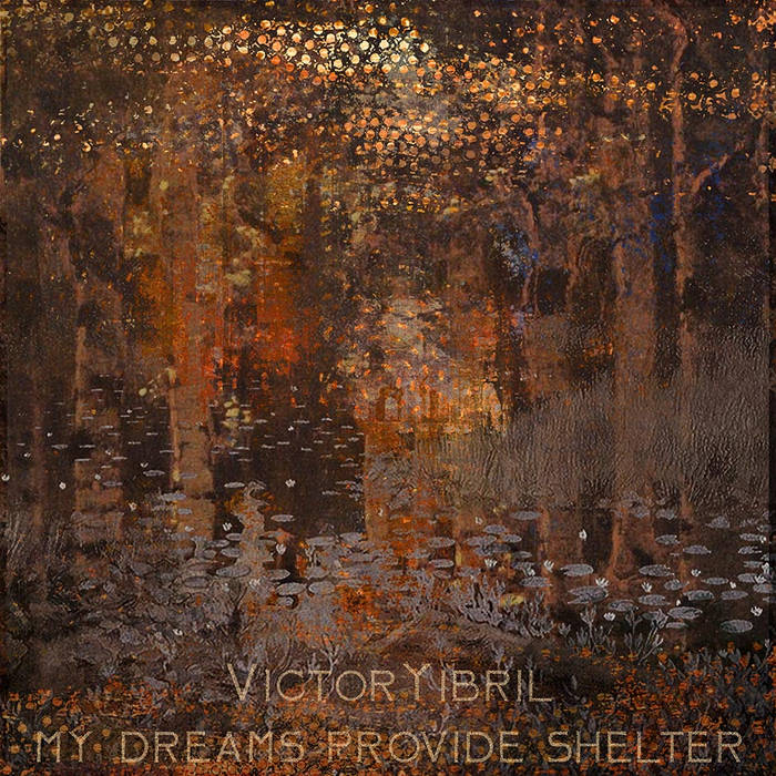 My Dream Provide Shelter cover art