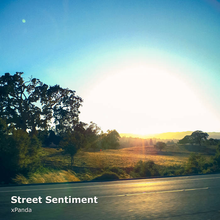 Street Sentiment cover art