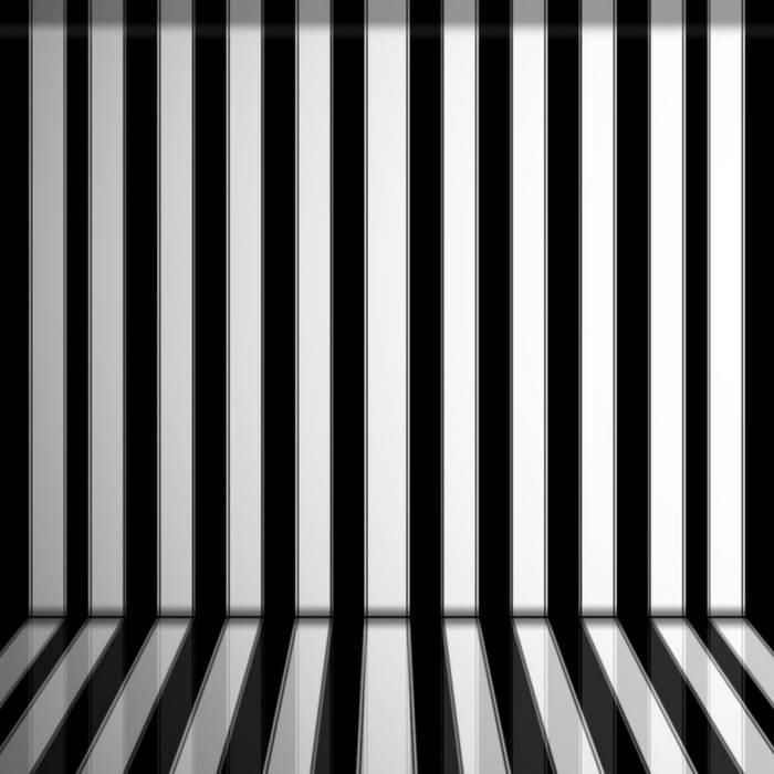 Zebra Stripes cover art