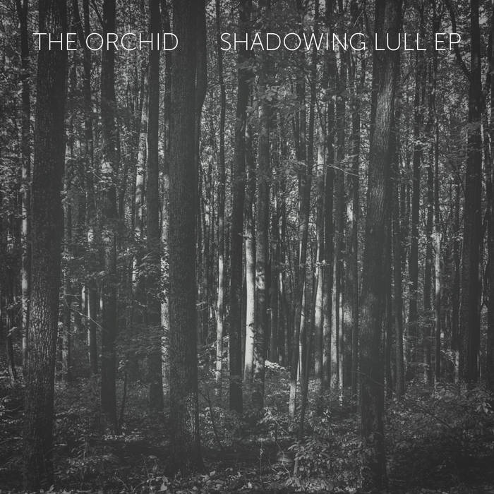 Shadowing Lull EP cover art