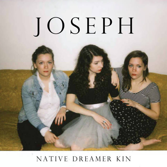 Native Dreamer Kin cover art