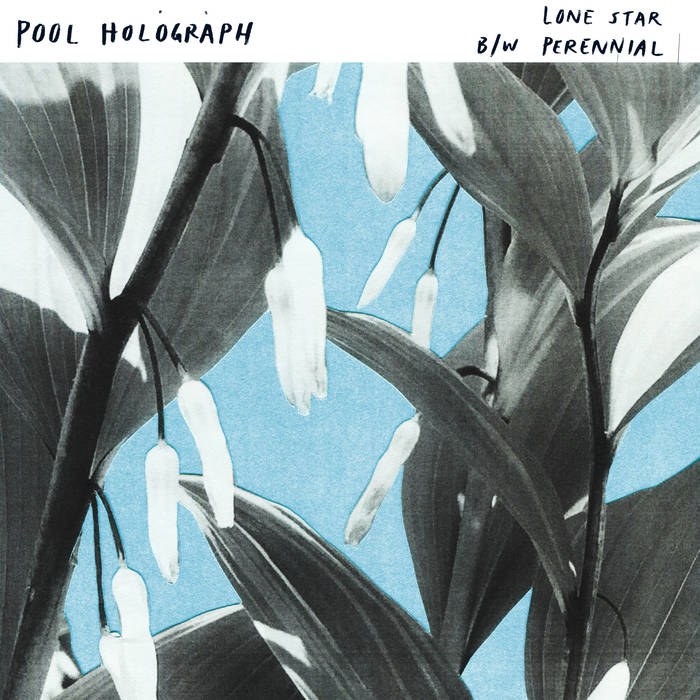 Lone Star b/w Perennial cover art