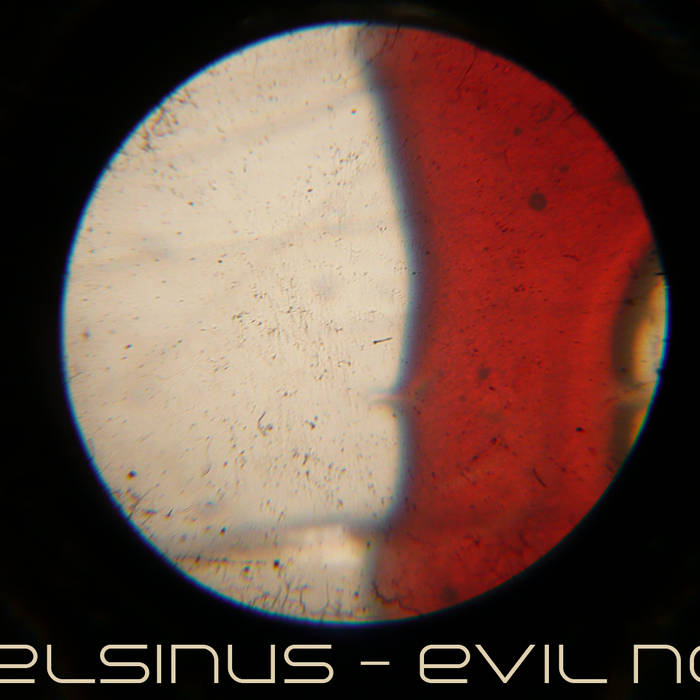EViL NOiSE cover art