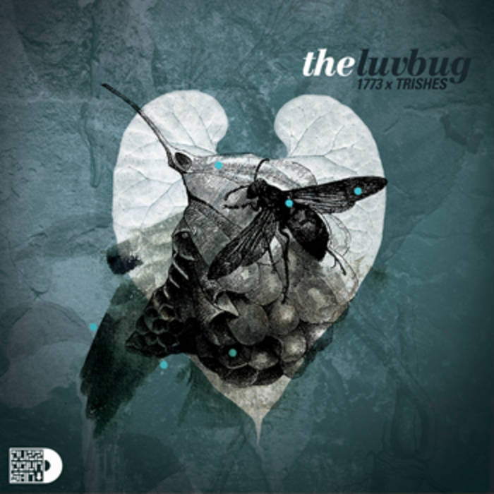 The Luv Bug (Deluxe Version) cover art