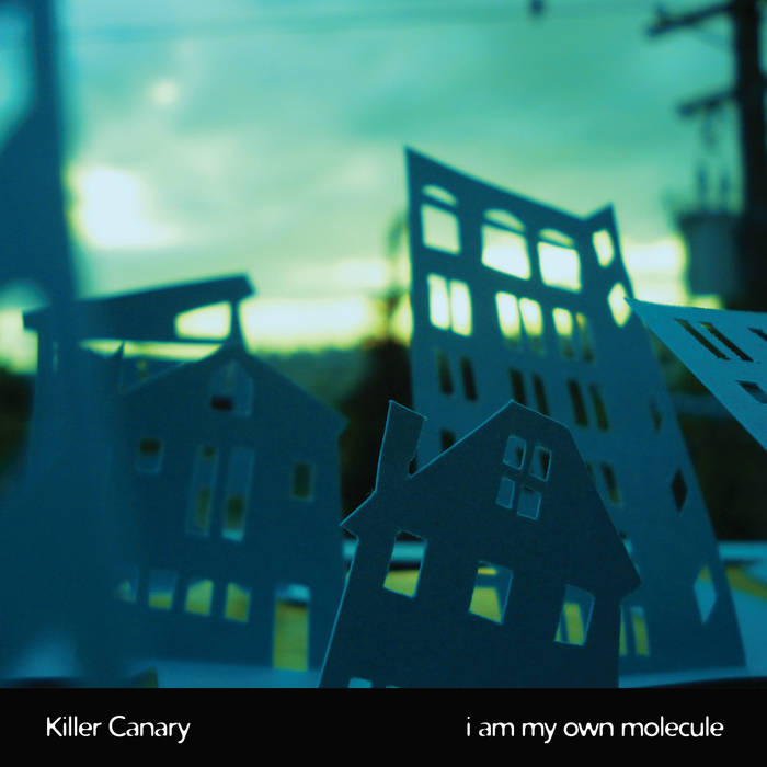 I Am My Own Molecule cover art