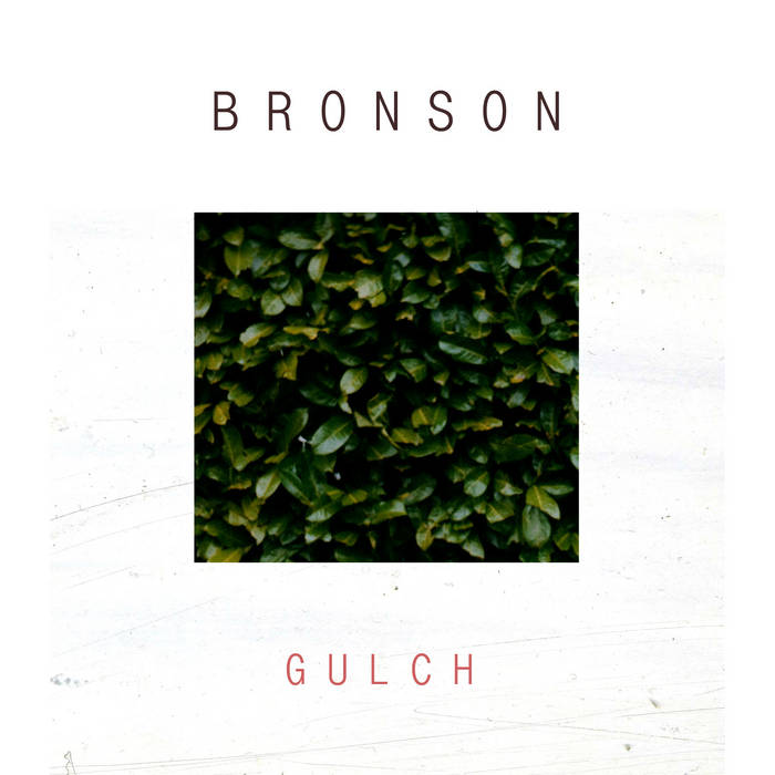 Gulch cover art