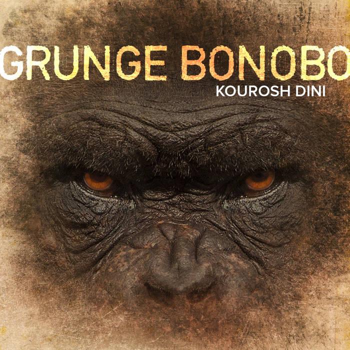 Grunge Bonobo cover art