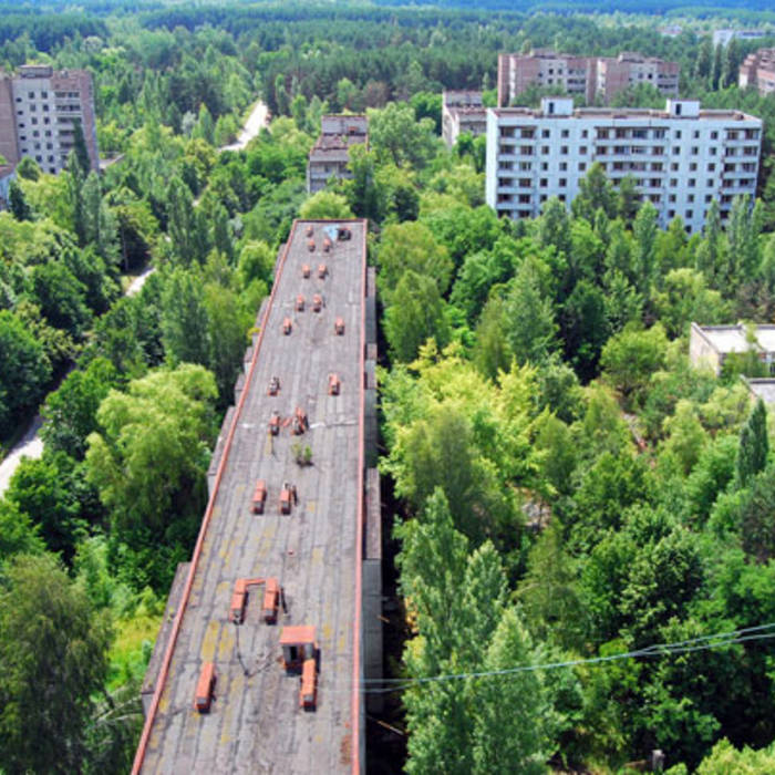 Heartswordsfire cover art