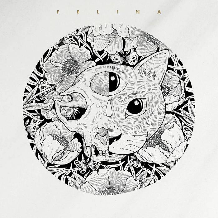 Felina cover art