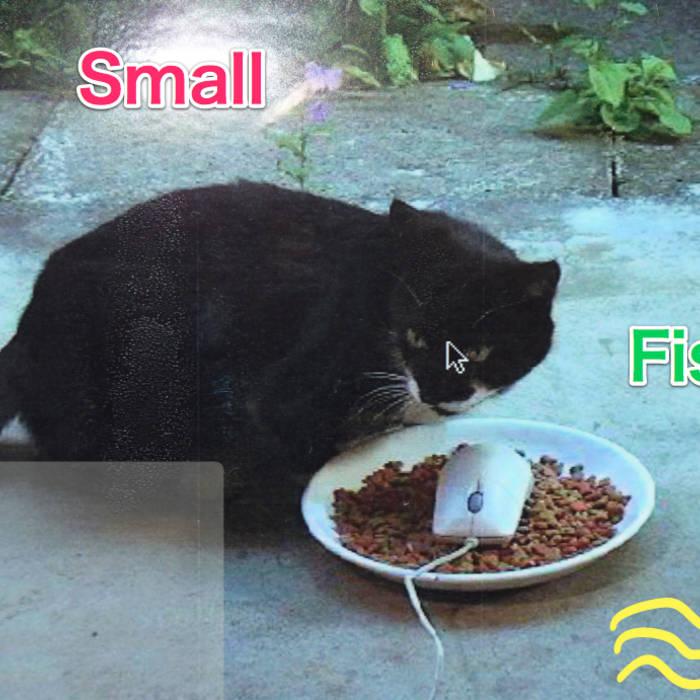 Small Fish cover art