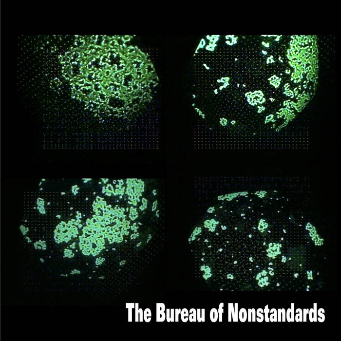 The Bureau of Nonstandards cover art