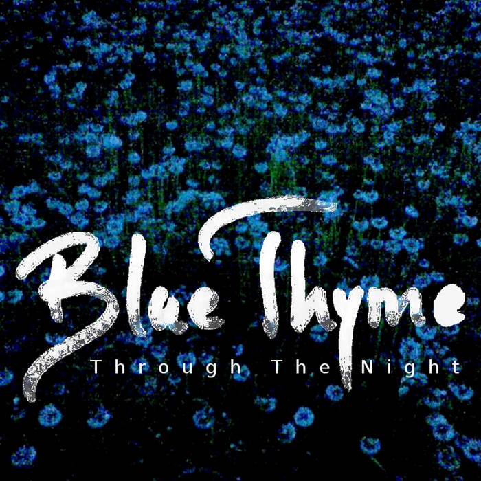 Through The Night cover art