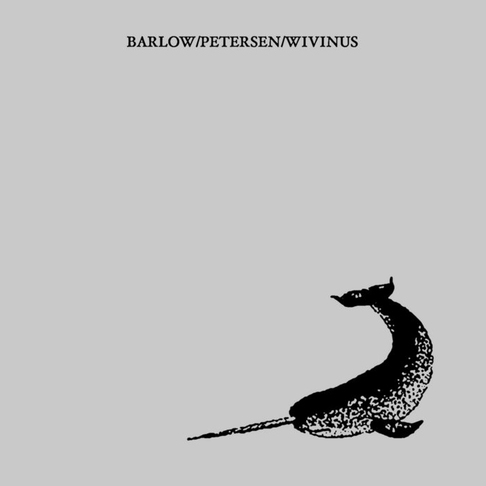 Narwhal cover art