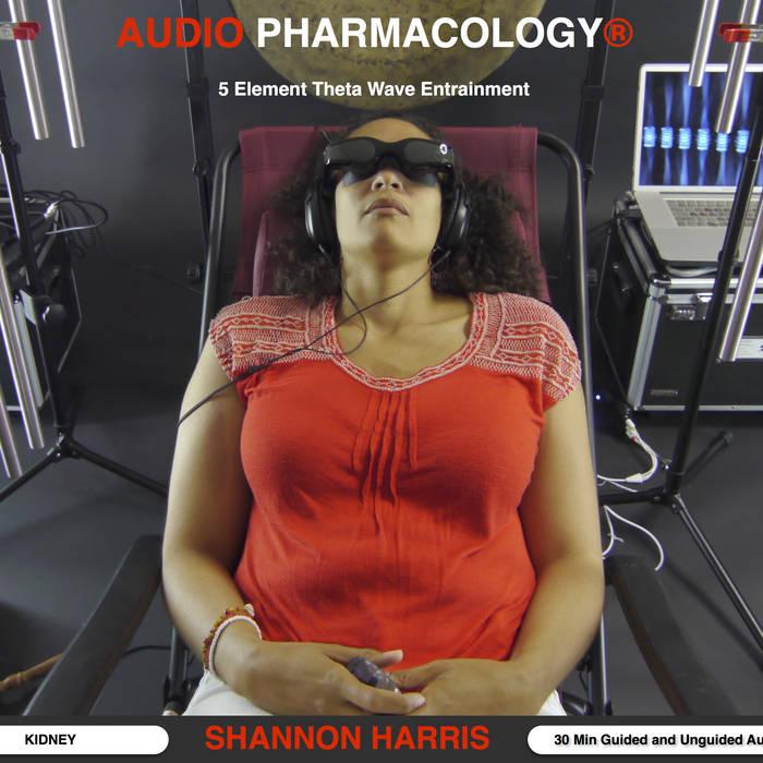 Audio Pharmacology® Kidney Theta Wave Entrainment CD cover art