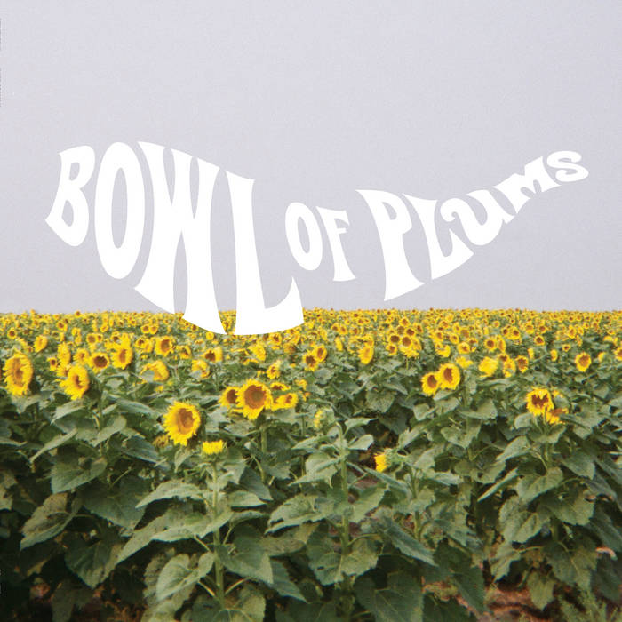 Bowl of Plums cover art
