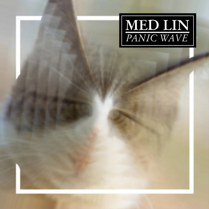 Panic Wave cover art