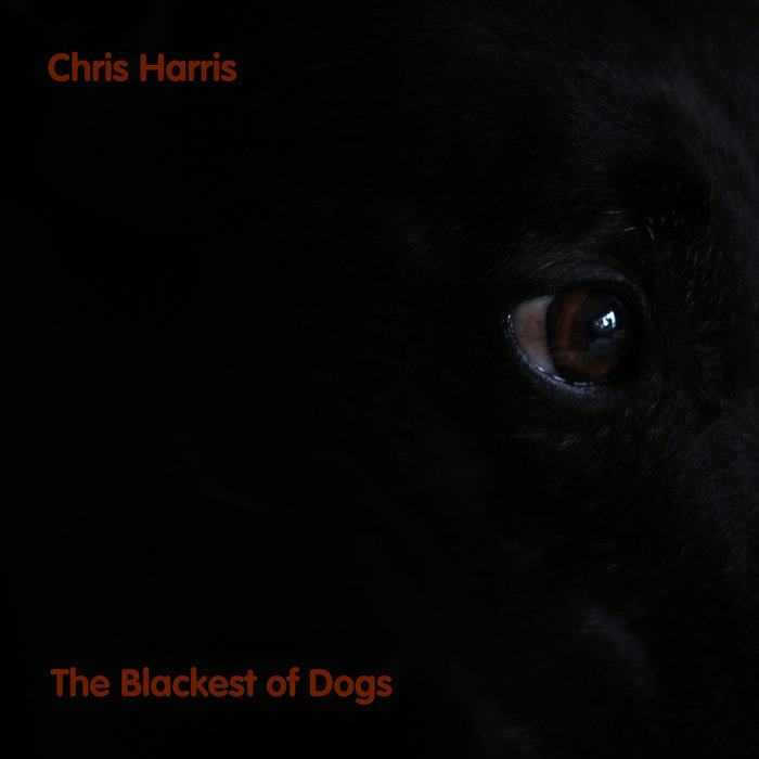 The Blackest of Dogs cover art