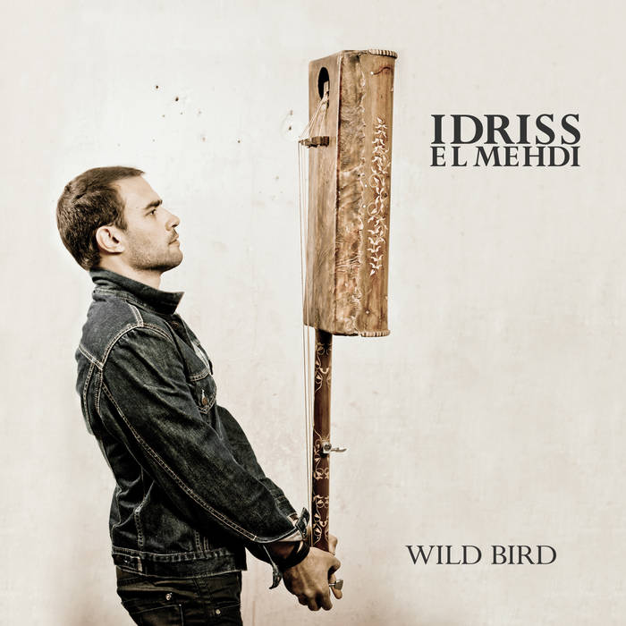 WILD BIRD cover art