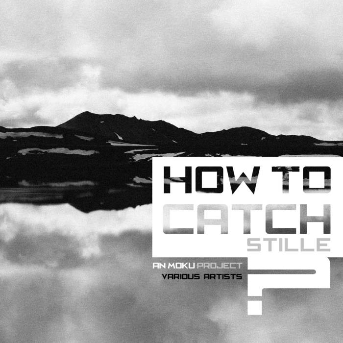How to catch STILLE? cover art