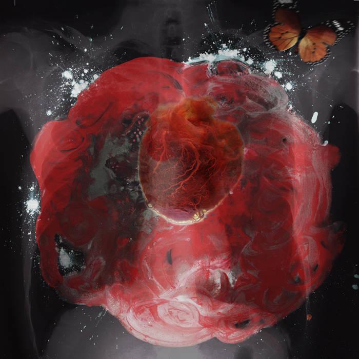 Interstices cover art