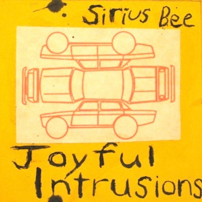 Joyful Intrusions cover art