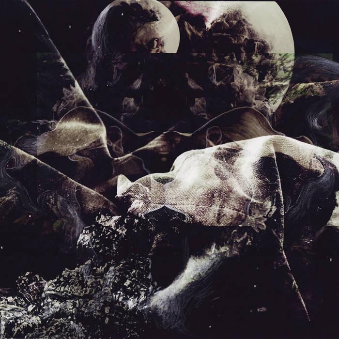 Black Velvet, Dead Flowers cover art