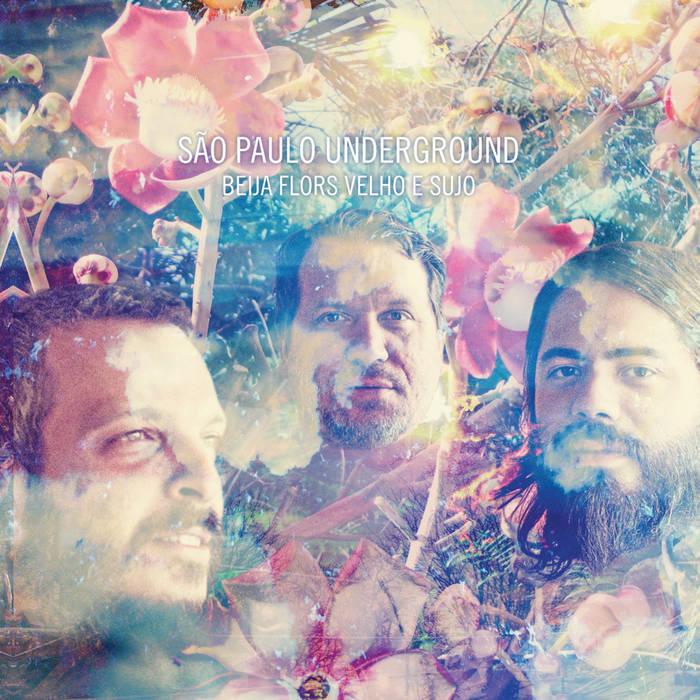 Beija Flors Velho E Sujo cover art