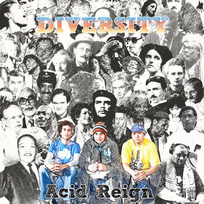 Diversity cover art