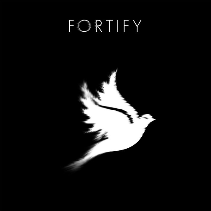 Fortify cover art