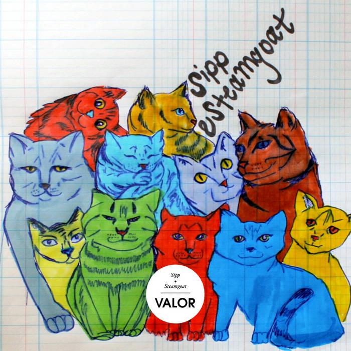 Valor [BB19] cover art