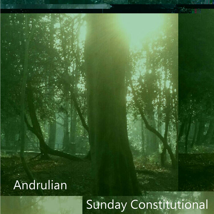 Sunday Constitutional cover art
