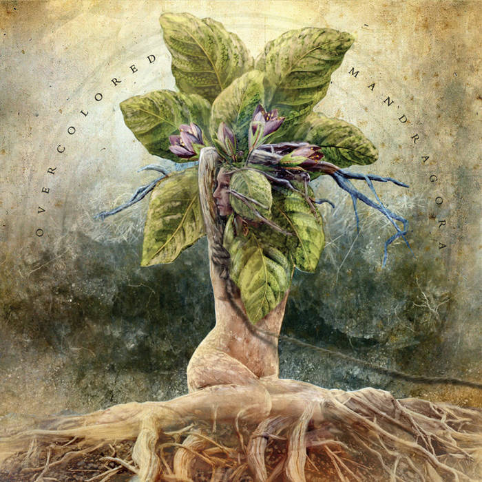 Mandragora cover art