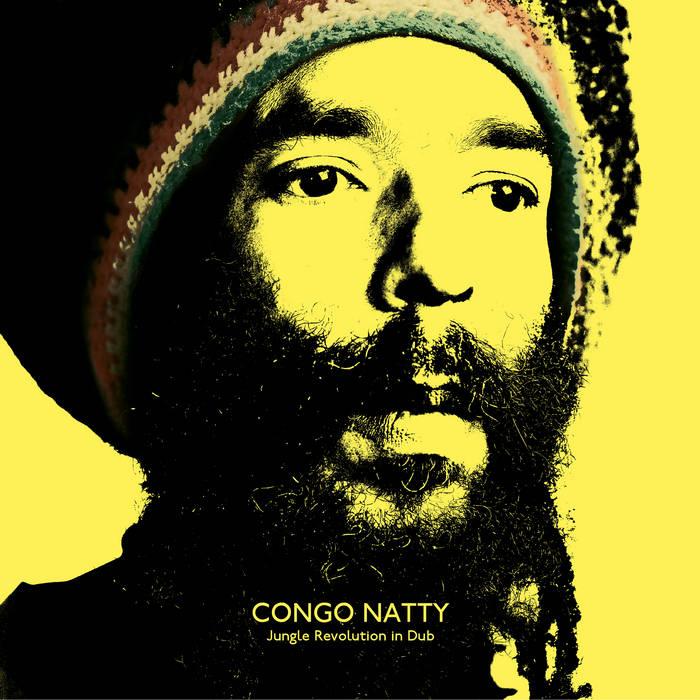 Jungle Revolution in Dub cover art