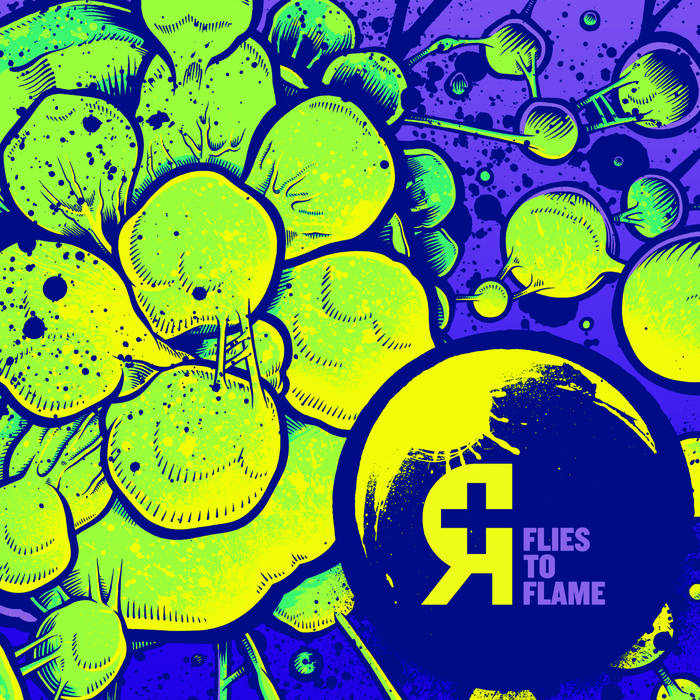 Flies to Flame cover art