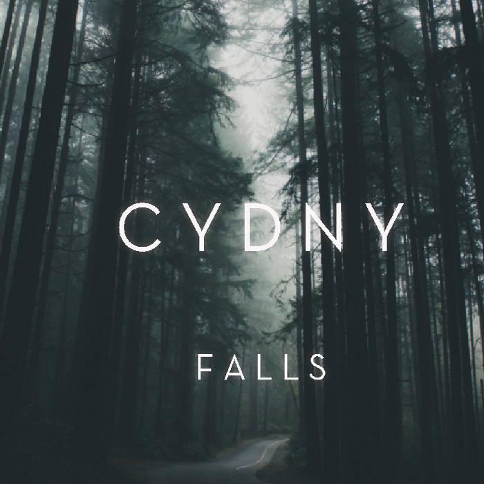 F A L L S cover art