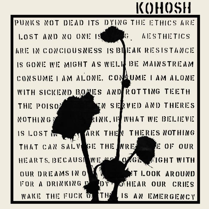 ADELIT@S // KOHOSH SPLIT LP cover art