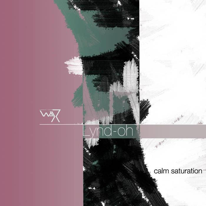 Calm Saturation cover art