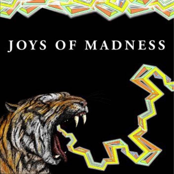 Joys Of Madness cover art