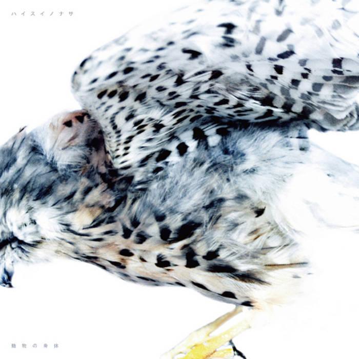 Animal Body cover art