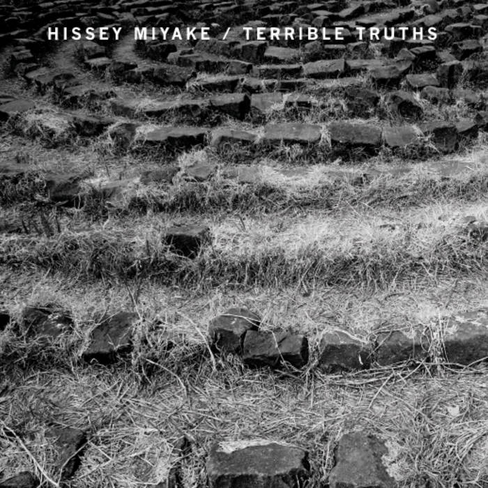 "Terrible Truths / Hissey Miyake : split 7"" (2012) cover art"