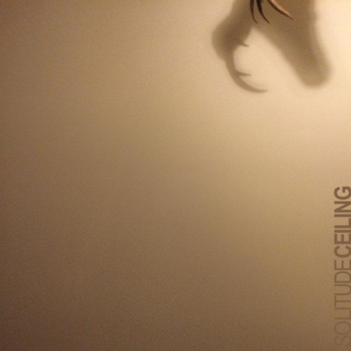 Ceiling cover art