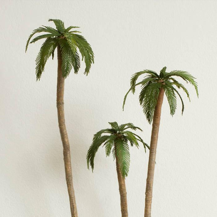 Tropics cover art