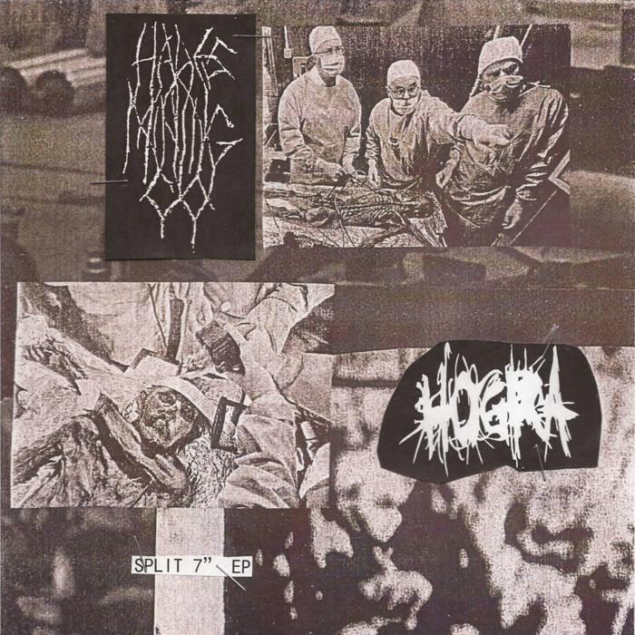 split w/ HOGRA cover art