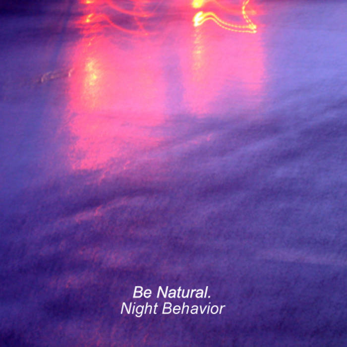 Night Behavior cover art