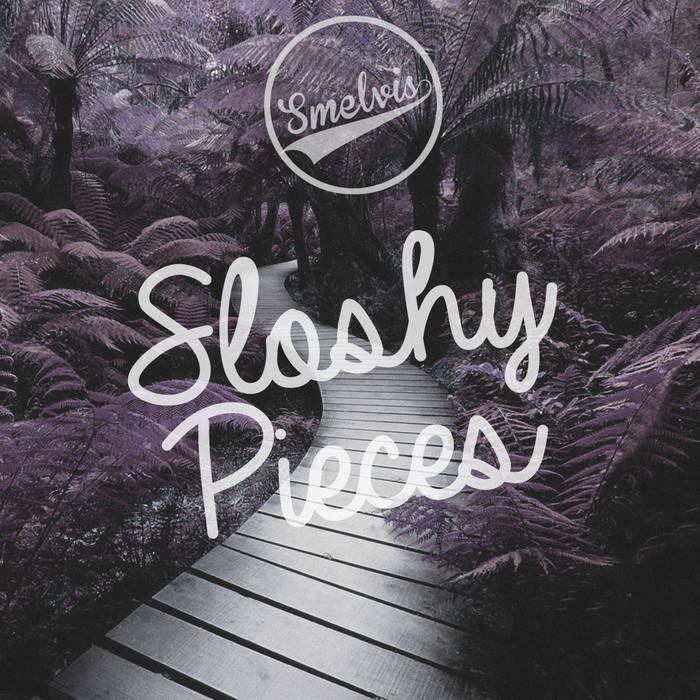 Sloshy Pieces cover art