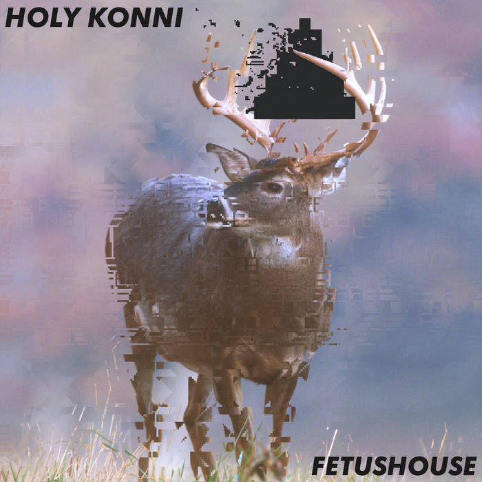 Fetushouse cover art