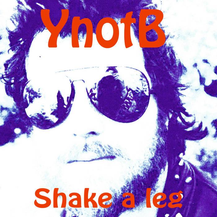 Shake A Leg cover art