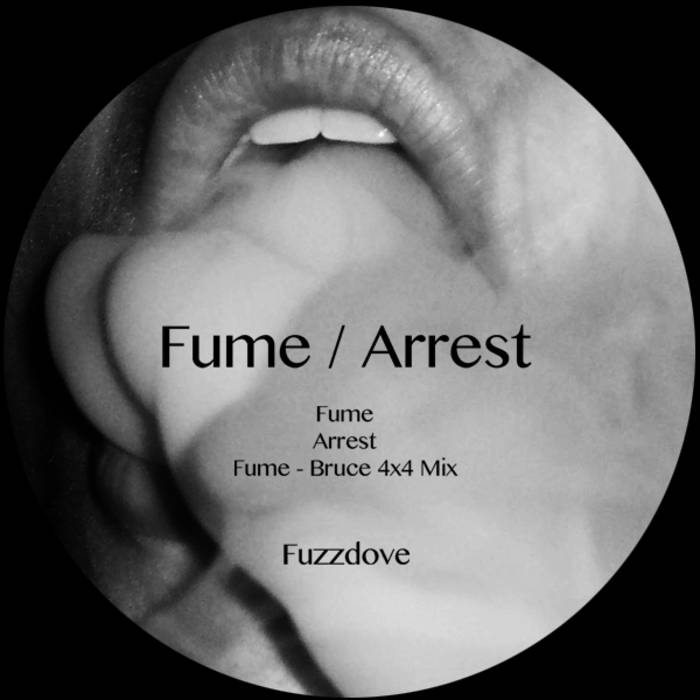Fume / Arrest cover art