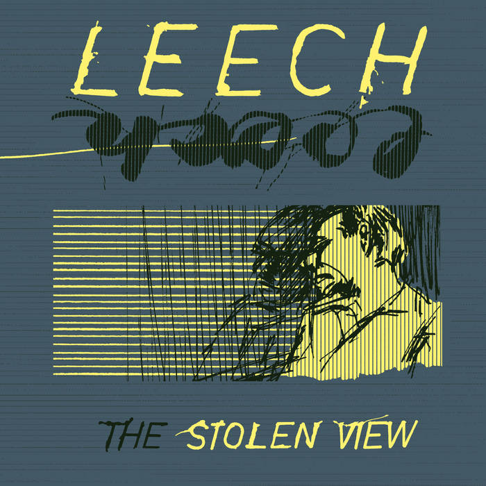 The Stolen View cover art